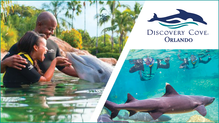 Sea World Discovery Cove Tickets
