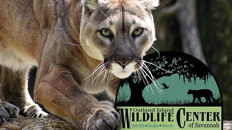 Oatland Island Wildlife Center Trip