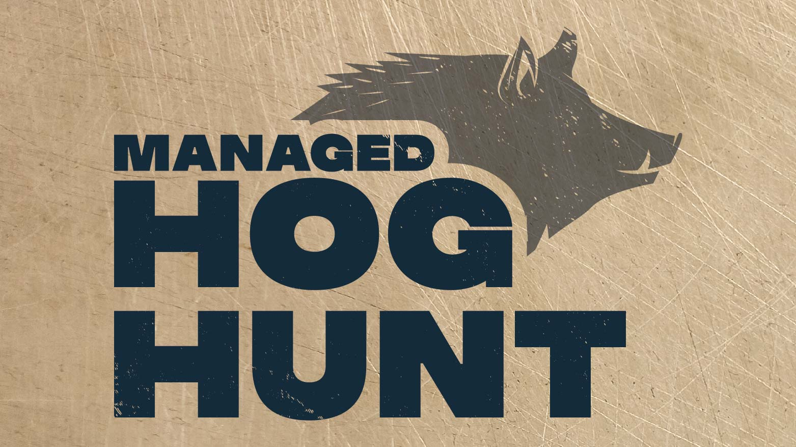 Managed Hog Hunt