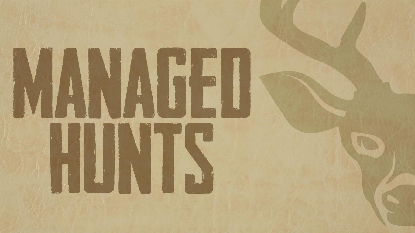 Managed Deer and Hog Hunt