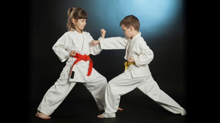 SKIESUnlimited Japanese Jiu-Jitsu